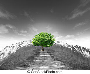 A tree summer landscape with old road mountain and bluesky