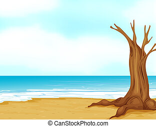 A tree without leaves at the seashore