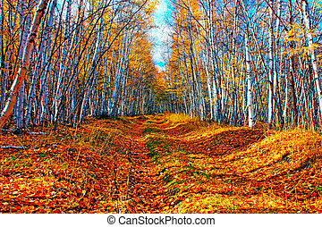 a trees in autumn forest