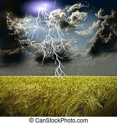 a, trigal, e, tempestade, com, relâmpagos