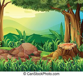 a, tronco árvore