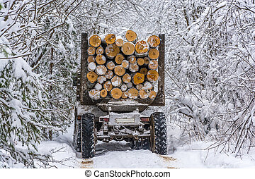 Log truck, heavily loaded with logs, going on snow, forest road.