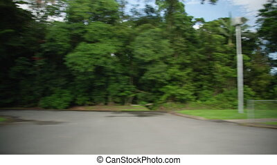 A trucking shot to the right of the jungle while moving. Medium shot.