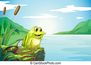 A trunk at the river with a frog - Illustration of a trunk...