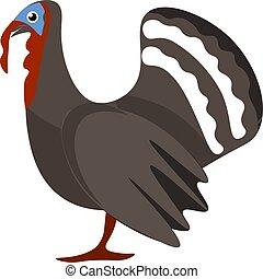 A Turkey bird vector or color illustration