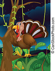 A turkey in the middle of the night - Illustration of a...