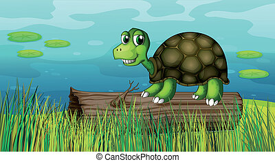 A turtle above a wood at the riverbank