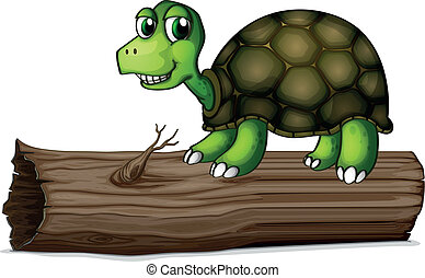 A turtle above the wood