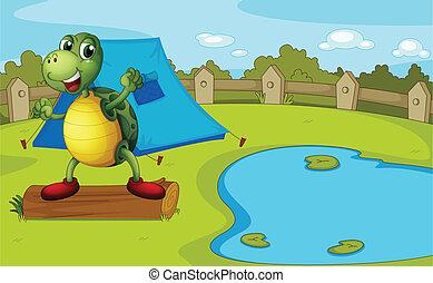 A turtle beside the pond inside a fence