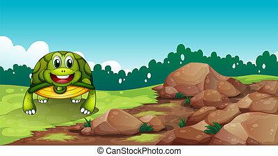 A turtle crawling near the rocks