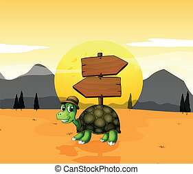 A turtle in the desert near the arrowboards