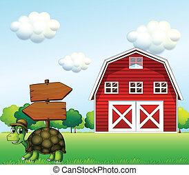a, turtle, mit, a, hölzern, pfeil, brett, und, a, scheune,...