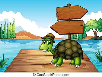 A turtle near the wooden arrowboard