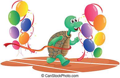a, turtle, rennender , mit, farbenprächtige luftballons