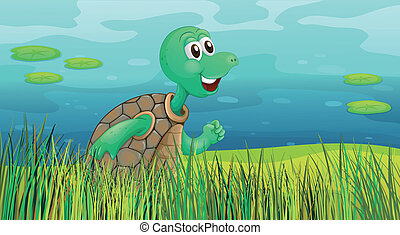 A turtle running along the pond