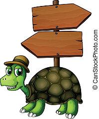 A turtle under an empty arrowboard