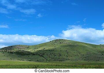 A unique landscape