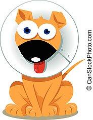 a vector cartoon representing a funny dog with elizabethan collar