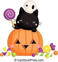 A Vector of Cute Black Cat Hiding Inside the Cute Pumpkin Holding Lollipop
