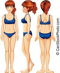 A Vector of Female Body