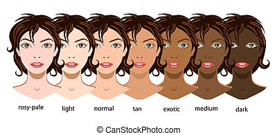 A vector set of six types of skin from pale to exotic