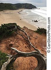 Vertical of beach in southwest Portugal
