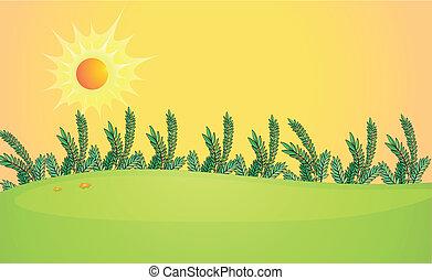 A very bright sun