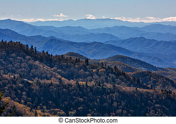 Blue Ridge Parkway - A view from an overlook on the iconic...