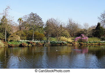 A View of a Lake in Spring