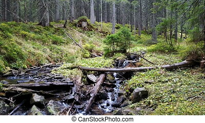 A view of a mountain stream that flows down a slope of...