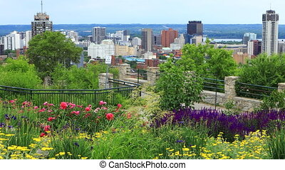 View of Hamilton, Canada, city center with flowers in front