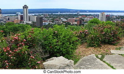 View of Hamilton, Canada, skyline with flowers in foreground