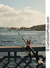 a view of the Bosphorus, and the city, - view of the...