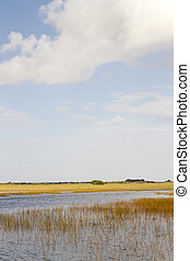 Florida Everglades - A view of the Florida Everglades from...