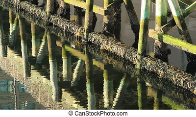 View of wharf pilings with reflections - A View of wharf...