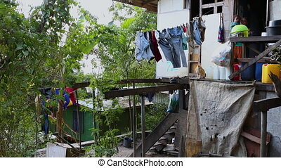 A village home in Papua new guinea - Village home with a pet...