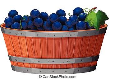 A Vine of Grape in Bucket