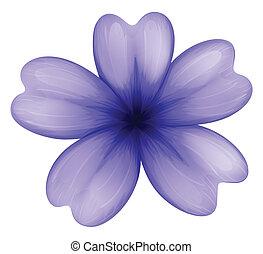 A violet flower - Illustration of a violet flower on a white...