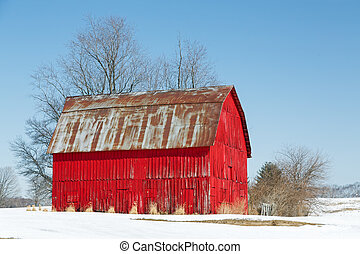 A vivid red wooden barn is topped with a rusty metal roof in a s