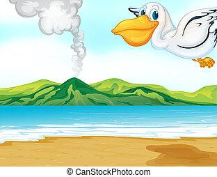 A volcano beach and a flying bird