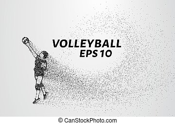 A volley of particles. Volleyball consists of small circles.