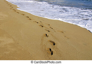 A Walk On The Beach - Beach Series - images depicting the ...