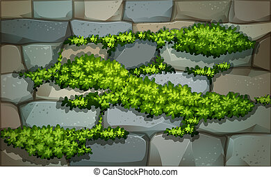 A wall with plants