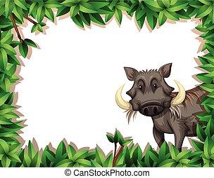A warthog on nature frame