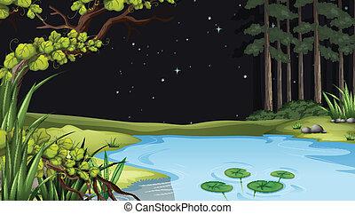a, waterform, à, les, forêt