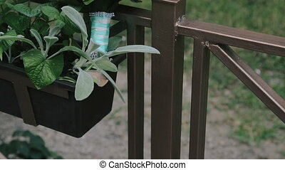 A wedding bouquet on a balcony near the garden