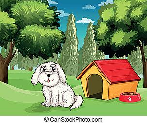 a, weißes, junger hund, draußen, seine, hundehütte