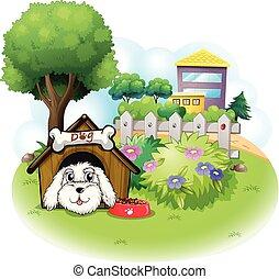 a, weißes, junger hund, innenseite, a, hundehütte