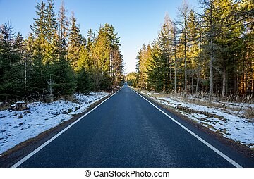 A wet roadway where a snow storm has left snow even on the bright colored leaves still in the trees lining the tarmac blacktop road during a europe winter. Simple road wallpaper.
