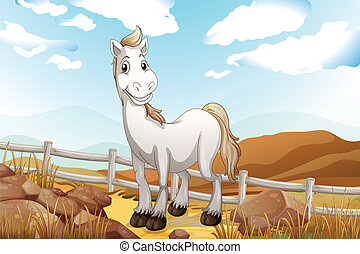 A white horse near the wooden fence